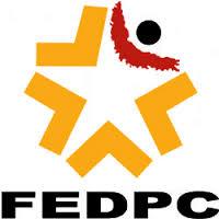 Federación Española de Deportes para personas con parálisis cerebral